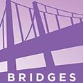 Bridges Jewish Women's Professional Series