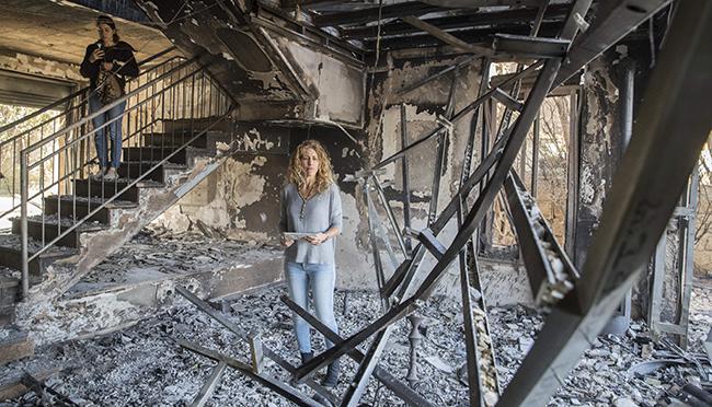 Israel Fire Emergency Fund