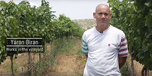 Kishor Special Winery