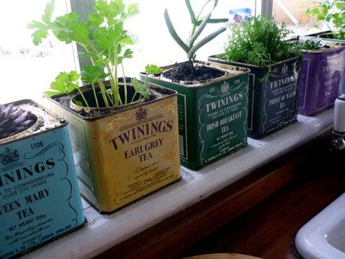 Creative Planting Pots