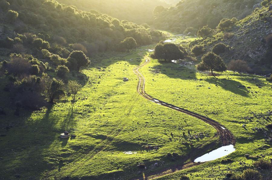 P2G Bike Trail