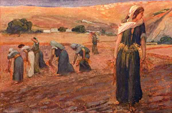 Gleaning in the Book of Ruth
